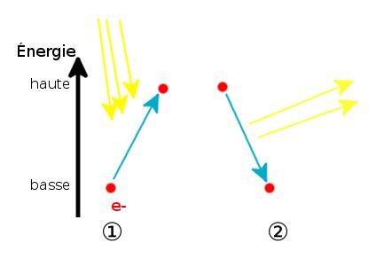La différence entre phosphorescence et fluorescence - Le
