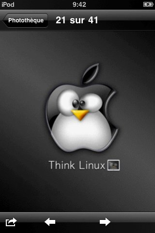 think linux on the ipod touch